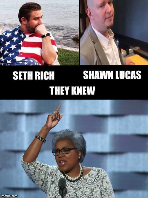 Brave Woman | image tagged in donna brazile,shawn lucas,seth rich,hillary clinton,body count,dnc | made w/ Imgflip meme maker