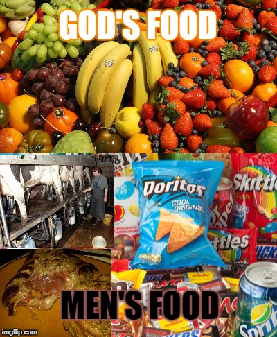 God's food - Men's Food | GOD'S FOOD MEN'S FOOD | image tagged in god,spiritual,vegan,junk food,meat,dairy | made w/ Imgflip meme maker