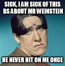 SICK, I AM SICK OF THIS BS ABOUT MR WEINSTEIN HE NEVER HIT ON ME ONCE | image tagged in ruth cares | made w/ Imgflip meme maker
