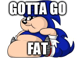 GOTTA GO FAT | image tagged in fat,sonic the hedgehog | made w/ Imgflip meme maker