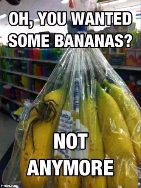 VEGAN PROBLEMS | . | image tagged in memes,funny,banana,vegan,fruit,spider | made w/ Imgflip meme maker