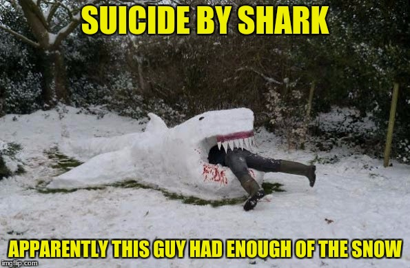 Suicide by shark (art week a jbmemegeek and sir_unknown event) | SUICIDE BY SHARK APPARENTLY THIS GUY HAD ENOUGH OF THE SNOW | image tagged in jbmemegeek,sir_unknown,suicide by shark,snow | made w/ Imgflip meme maker