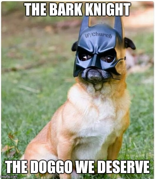 And the one we need too | THE BARK KNIGHT THE DOGGO WE DESERVE | image tagged in memes,the dark knight,batman,doggo | made w/ Imgflip meme maker
