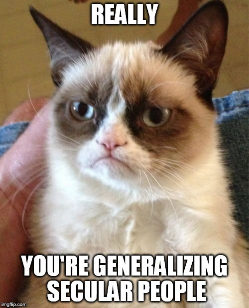 Grumpy Cat Meme | REALLY YOU'RE GENERALIZING SECULAR PEOPLE | image tagged in memes,grumpy cat,anti-generalization,anti-generalizations,anti-generalizing,anti-generalize | made w/ Imgflip meme maker