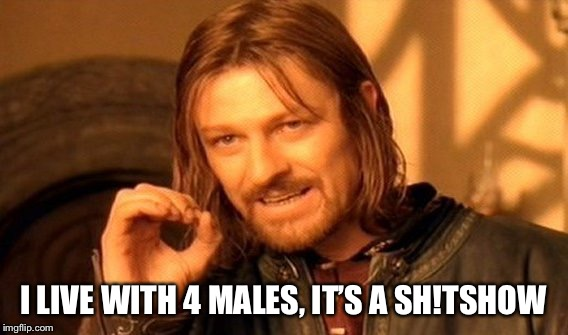 One Does Not Simply Meme | I LIVE WITH 4 MALES, IT'S A SH!TSHOW | image tagged in memes,one does not simply | made w/ Imgflip meme maker