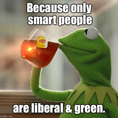 But Thats None Of My Business Meme | Because only smart people are liberal & green. | image tagged in memes,but thats none of my business,kermit the frog | made w/ Imgflip meme maker