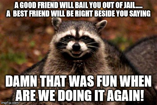 Evil Plotting Raccoon Meme | A GOOD FRIEND WILL BAIL YOU OUT OF JAIL..... A  BEST FRIEND WILL BE RIGHT BESIDE YOU SAYING DAMN THAT WAS FUN WHEN ARE WE DOING IT AGAIN! | image tagged in memes,evil plotting raccoon | made w/ Imgflip meme maker