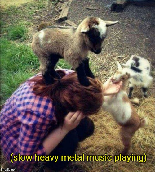 (slow heavy metal music playing) | image tagged in kids playing | made w/ Imgflip meme maker