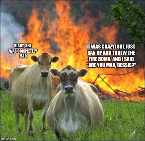 "mad cow | IT WAS CRAZY! SHE JUST RAN UP AND THREW THE FIRE BOMB. AND I SAID ""ARE YOU MAD, BESSIE?"" RIGHT, SHE WAS COMPLETELY MAD 