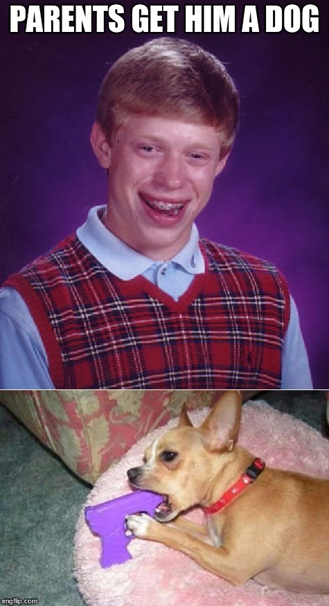 Bad Luck Brian | PARENTS GET HIM A DOG | image tagged in memes,bad luck brian | made w/ Imgflip meme maker