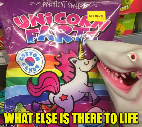 Unicorn Farts | WHAT ELSE IS THERE TO LIFE | image tagged in unicorn farts,memes,farts,unicorn,sweet | made w/ Imgflip meme maker