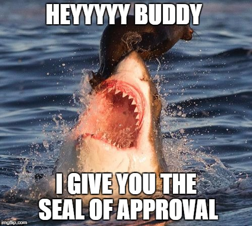 Travelonshark | HEYYYYY BUDDY I GIVE YOU THE SEAL OF APPROVAL | image tagged in memes,travelonshark | made w/ Imgflip meme maker