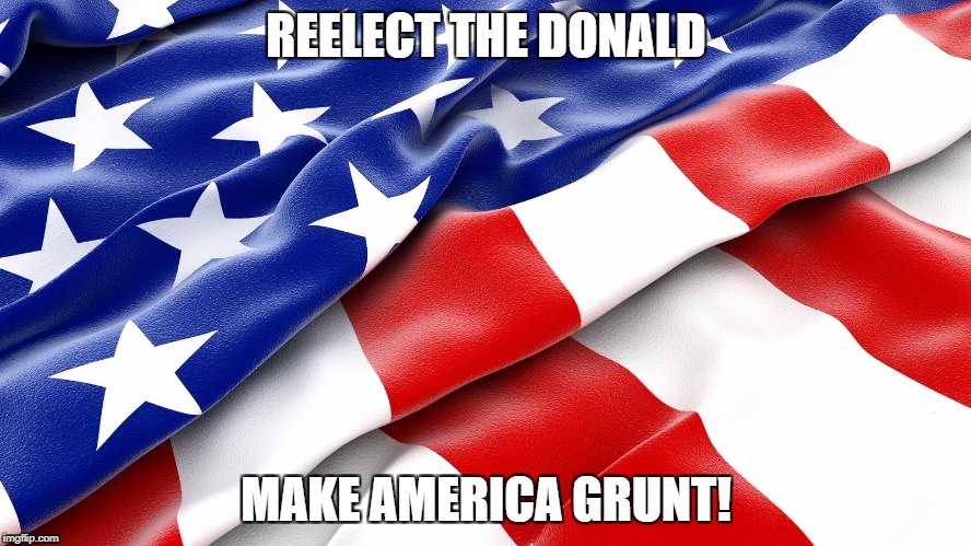 Reelect The Donald. Make America Grunt. | REELECT THE DONALD MAKE AMERICA GRUNT! | image tagged in leather american flag,make america great,the donald,american grunt,make america grunt | made w/ Imgflip meme maker