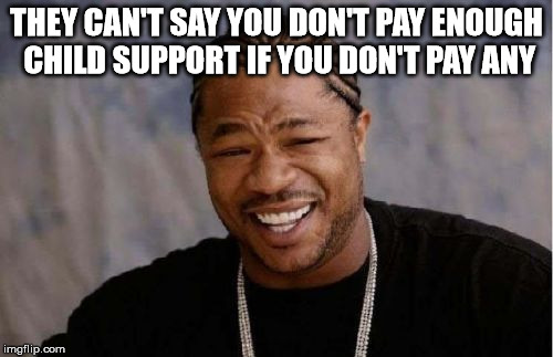 Yo Dawg Heard You Meme | THEY CAN'T SAY YOU DON'T PAY ENOUGH CHILD SUPPORT IF YOU DON'T PAY ANY | image tagged in memes,yo dawg heard you | made w/ Imgflip meme maker