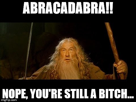 ABRACADABRA!! NOPE, YOU'RE STILL A B**CH... | image tagged in gandolf | made w/ Imgflip meme maker