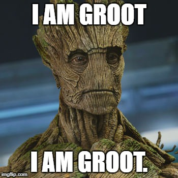I am Groot | I AM GROOT I AM GROOT. | image tagged in i am groot | made w/ Imgflip meme maker
