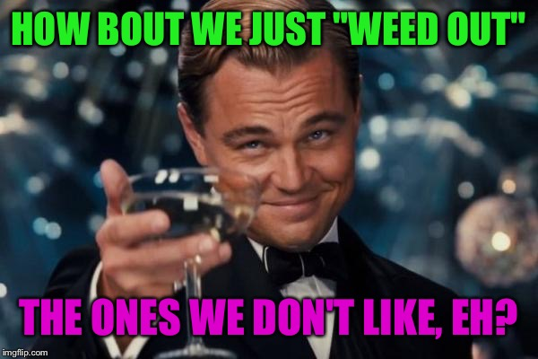 "Leonardo Dicaprio Cheers Meme | HOW BOUT WE JUST ""WEED OUT"" THE ONES WE DON'T LIKE, EH? 