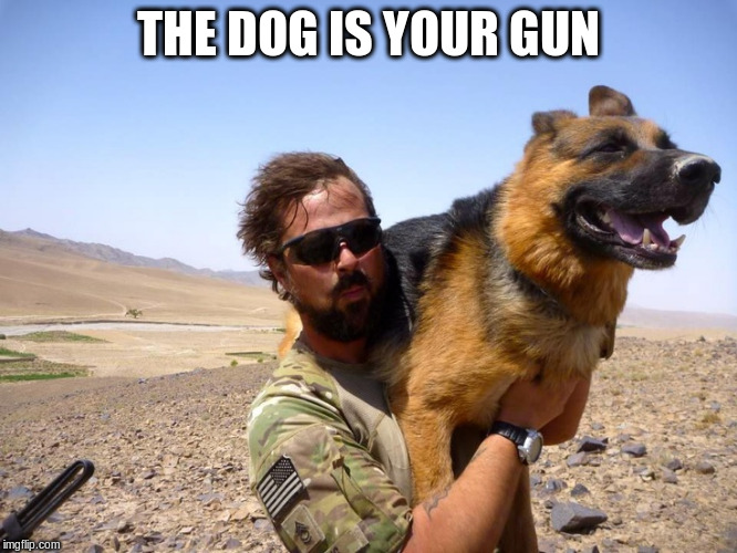 THE DOG IS YOUR GUN | made w/ Imgflip meme maker