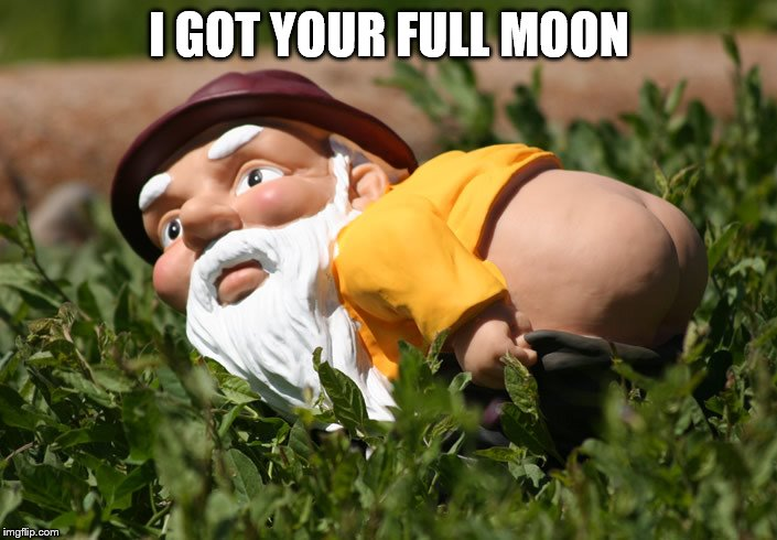 I GOT YOUR FULL MOON | made w/ Imgflip meme maker