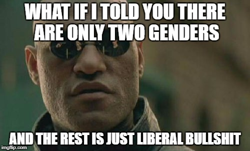 Matrix Morpheus Meme | WHAT IF I TOLD YOU THERE ARE ONLY TWO GENDERS AND THE REST IS JUST LIBERAL BULLSHIT | image tagged in memes,matrix morpheus | made w/ Imgflip meme maker