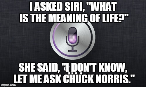"Siri: The Meaning Of Life | I ASKED SIRI, ""WHAT IS THE MEANING OF LIFE?"" SHE SAID, ""I DON'T KNOW, LET ME ASK CHUCK NORRIS."" 