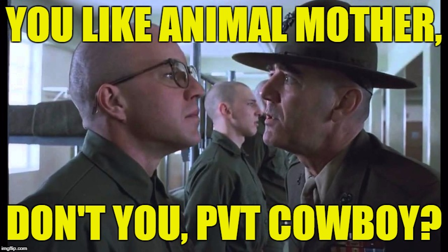 full metal jacket | YOU LIKE ANIMAL MOTHER, DON'T YOU, PVT COWBOY? | image tagged in full metal jacket | made w/ Imgflip meme maker