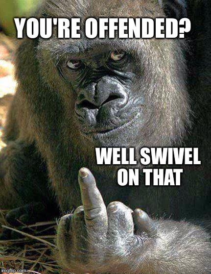 Took offense ? | YOU'RE OFFENDED? WELL SWIVEL ON THAT | image tagged in snowflake | made w/ Imgflip meme maker