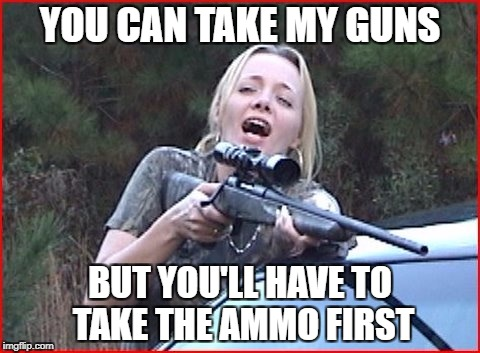 One round at a time? Or Semi Auto? | YOU CAN TAKE MY GUNS BUT YOU'LL HAVE TO TAKE THE AMMO FIRST | image tagged in gun control | made w/ Imgflip meme maker