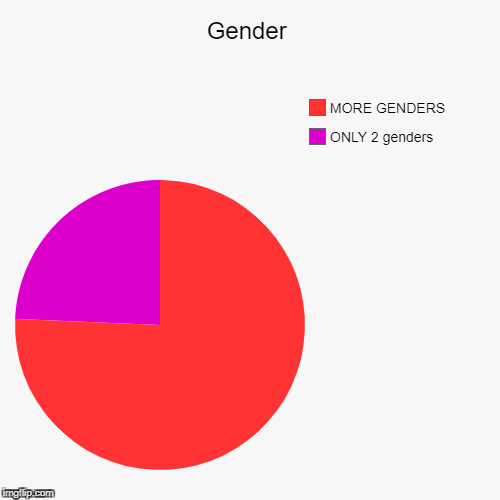 Gender | ONLY 2 genders, MORE GENDERS | image tagged in funny,pie charts | made w/ Imgflip pie chart maker
