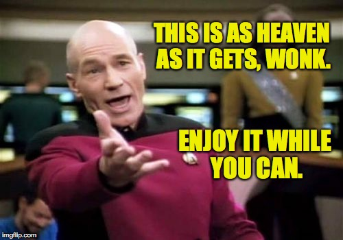 Picard Wtf Meme | THIS IS AS HEAVEN AS IT GETS, WONK. ENJOY IT WHILE YOU CAN. | image tagged in memes,picard wtf | made w/ Imgflip meme maker