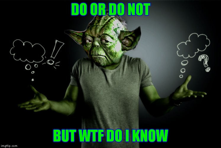 yoda shrug | DO OR DO NOT BUT WTF DO I KNOW | image tagged in yoda shrug | made w/ Imgflip meme maker