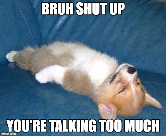 BRUH SHUT UP YOU'RE TALKING TOO MUCH | image tagged in corgi puppy sleeping | made w/ Imgflip meme maker