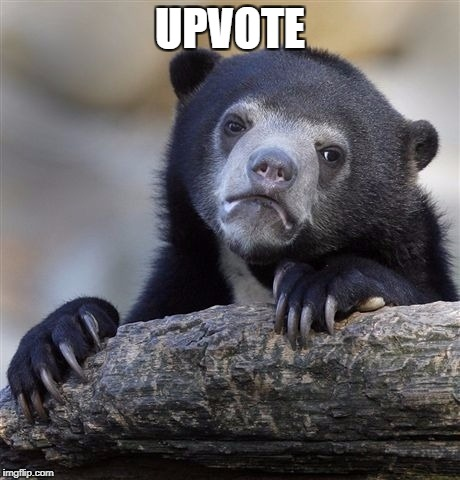 Confession Bear Meme | UPVOTE | image tagged in memes,confession bear | made w/ Imgflip meme maker
