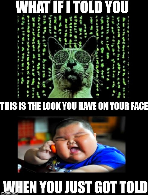 The Look | WHAT IF I TOLD YOU THIS IS THE LOOK YOU HAVE ON YOUR FACE WHEN YOU JUST GOT TOLD | image tagged in matrix cat logic,i was told but i ate him and forgot about it,told,eats everything kid,what if i told you,they told me but i did | made w/ Imgflip meme maker