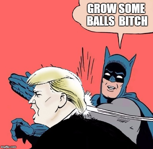 Batman slaps Trump | GROW SOME BALLS B**CH | image tagged in batman slaps trump | made w/ Imgflip meme maker