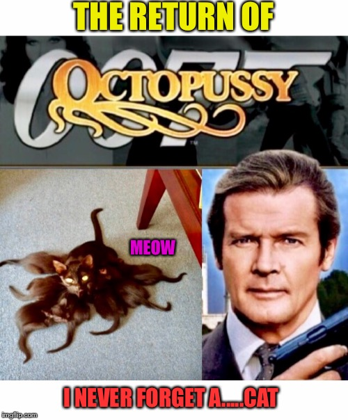 Not The Best Bond Movie | THE RETURN OF I NEVER FORGET A.....CAT MEOW | image tagged in james bond,roger moore,1980's,movie | made w/ Imgflip meme maker