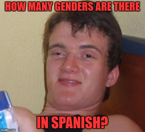10 Guy Meme | HOW MANY GENDERS ARE THERE IN SPANISH? | image tagged in memes,10 guy | made w/ Imgflip meme maker