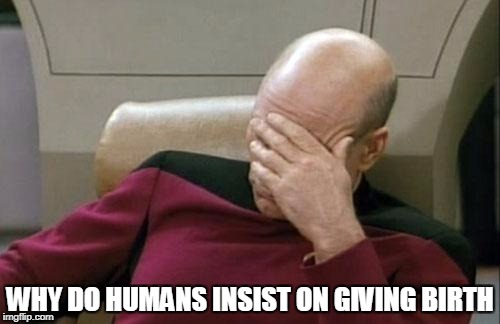 Captain Picard Facepalm Meme | WHY DO HUMANS INSIST ON GIVING BIRTH | image tagged in memes,captain picard facepalm,anti-overpopulation,anti-overpopulating | made w/ Imgflip meme maker