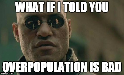 Matrix Morpheus Meme | WHAT IF I TOLD YOU OVERPOPULATION IS BAD | image tagged in memes,matrix morpheus,overpopulation,anti-overpopulation | made w/ Imgflip meme maker