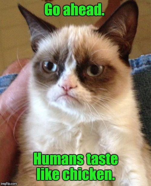 Grumpy Cat Meme | Go ahead. Humans taste like chicken. | image tagged in memes,grumpy cat | made w/ Imgflip meme maker