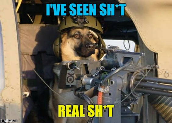 Door gunner doge has seen some stuff. Military week Nov 5-11  | I'VE SEEN SH*T REAL SH*T | image tagged in memes,dogs,military week,helicopter,mini gun,door gunner | made w/ Imgflip meme maker