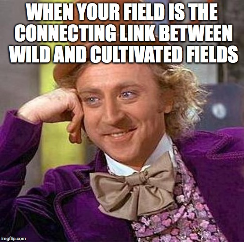 Creepy Condescending Wonka Meme | WHEN YOUR FIELD IS THE CONNECTING LINK BETWEEN WILD AND CULTIVATED FIELDS | image tagged in memes,creepy condescending wonka | made w/ Imgflip meme maker