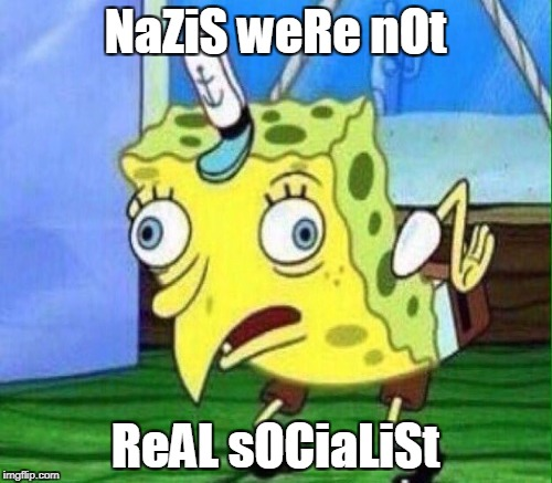 NaZiS weRe nOt ReAL sOCiaLiSt | made w/ Imgflip meme maker