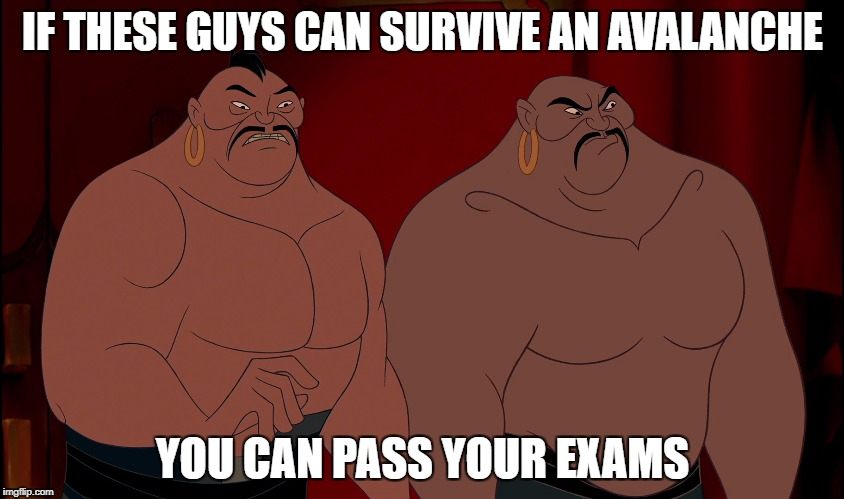 IF THESE GUYS CAN SURVIVE AN AVALANCHE YOU CAN PASS YOUR EXAMS | image tagged in exams,mulan,you can do it | made w/ Imgflip meme maker