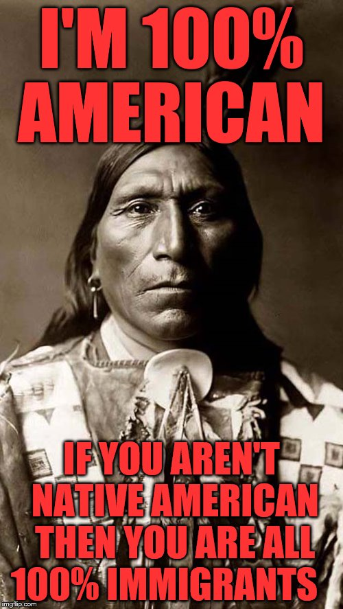 I'M 100% AMERICAN IF YOU AREN'T NATIVE AMERICAN THEN YOU ARE ALL 100% IMMIGRANTS | image tagged in i am native not a nigga | made w/ Imgflip meme maker