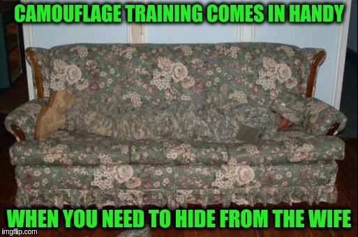 Military Week Nov 5-11th a Chad-, DashHopes, JBmemegeek & SpursFanFromAround event | CAMOUFLAGE TRAINING COMES IN HANDY WHEN YOU NEED TO HIDE FROM THE WIFE | image tagged in memes,funny,military,military week,camouflage,domestic situation | made w/ Imgflip meme maker