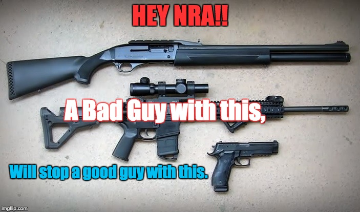 Gun Sense | HEY NRA!! Will stop a good guy with this. A Bad Guy with this, | image tagged in nra,gun violence,mass shootings,2nd amendment,assault weapon,gun safety | made w/ Imgflip meme maker