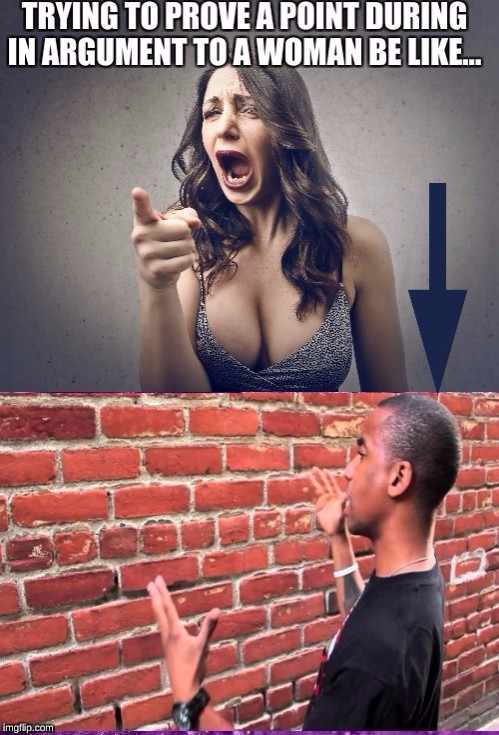 proving a point during an argument to a woman...be like talking to a wall | image tagged in feminism,memes,your argument is invalid,arguing,talking to wall | made w/ Imgflip meme maker