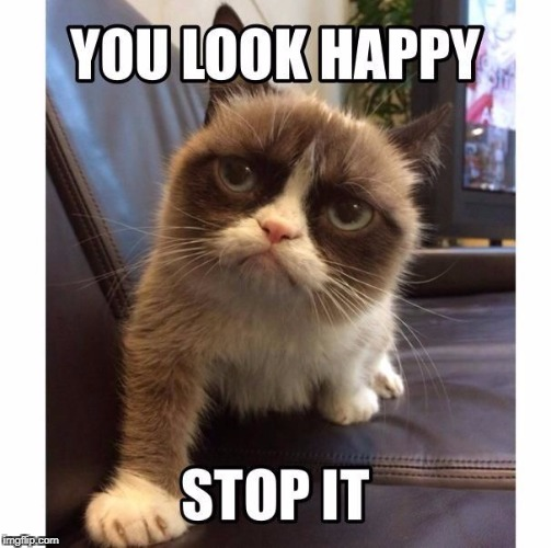 Dont be happy, be Grumpy | image tagged in grumpy cat,funny meme,dont be happy | made w/ Imgflip meme maker