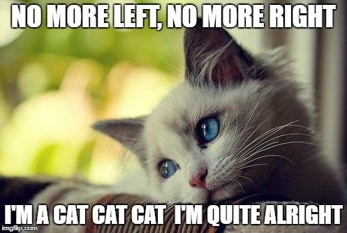 First World Problems Cat |  NO MORE LEFT, NO MORE RIGHT; I'M A CAT CAT CAT  I'M QUITE ALRIGHT | image tagged in memes,first world problems cat | made w/ Imgflip meme maker